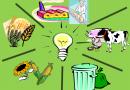 Еколошка инспекција