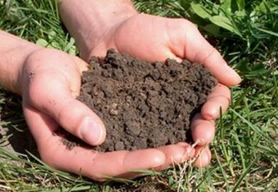 Јавни позив за прикупљање узорака земљишта у циљу бесплатне контроле плодности земљишта нa територији општине Љиг